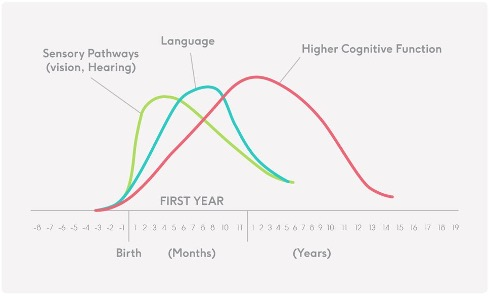 Shonkoff JP, Phillips DA,. From Neurons to Neighborhoods: The Science of Early Childhood Development: National Academy of Sciences, 2000.  